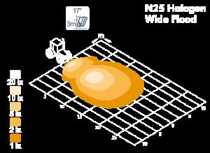 n25_wf_model.png