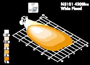n3101_model.png